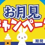 i2iポイント500円分のnanacoギフトが当たるお月見キャンペーン