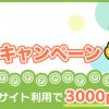 ポイントインカム「初めての公式サイトキャンペーン」で300円を稼ぐ方法!