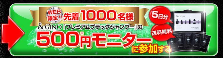 ポイントインカム経由で「&GINOプレミアムブラックシャンプー 500円モニター」へ申し込みをする方法・手順