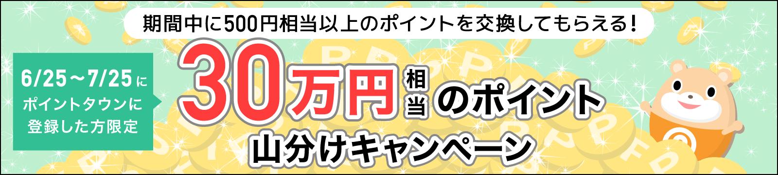 ポイントタウンの新規登録者限定30万円山分けキャンペーン