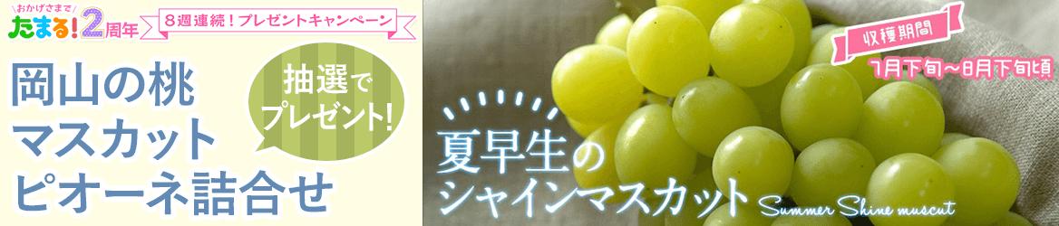【たまる!2周年】8週連続!プレゼントキャンペーン第1弾