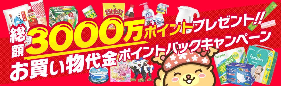 ポイントインカム「お買い物代金ポイントバックキャンペーン」総額300万円!